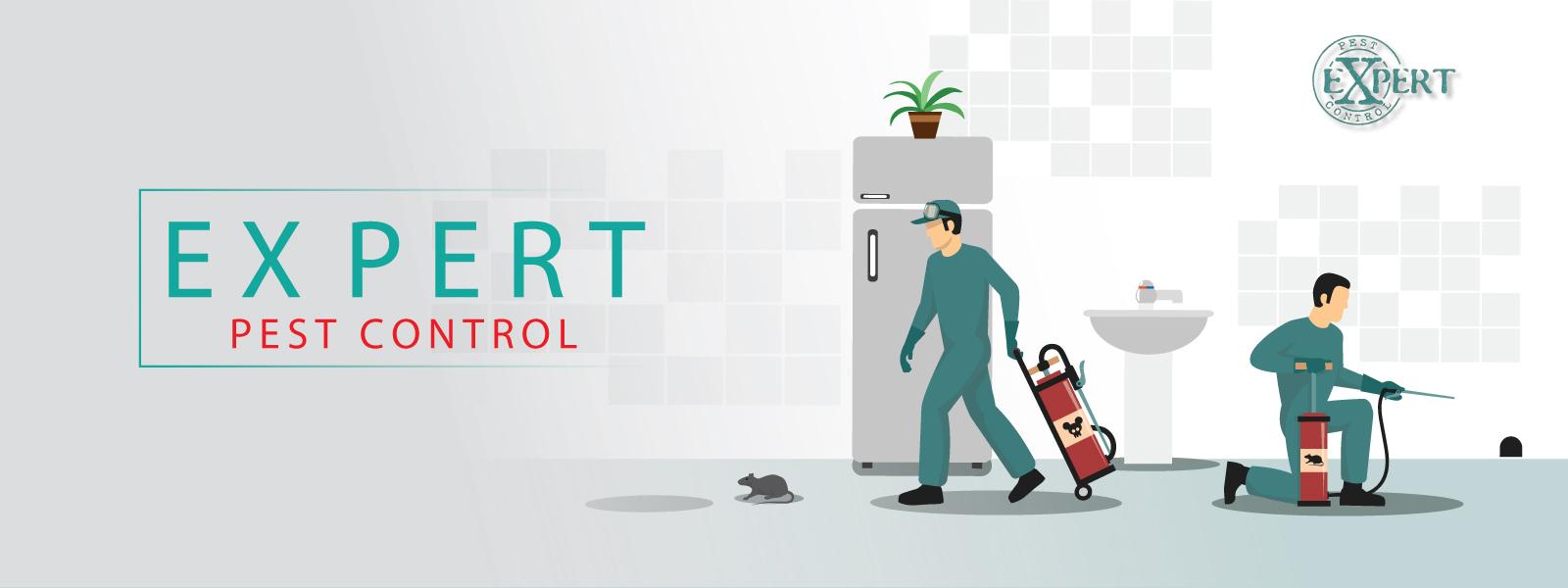 slider-expertpestcontrol-2