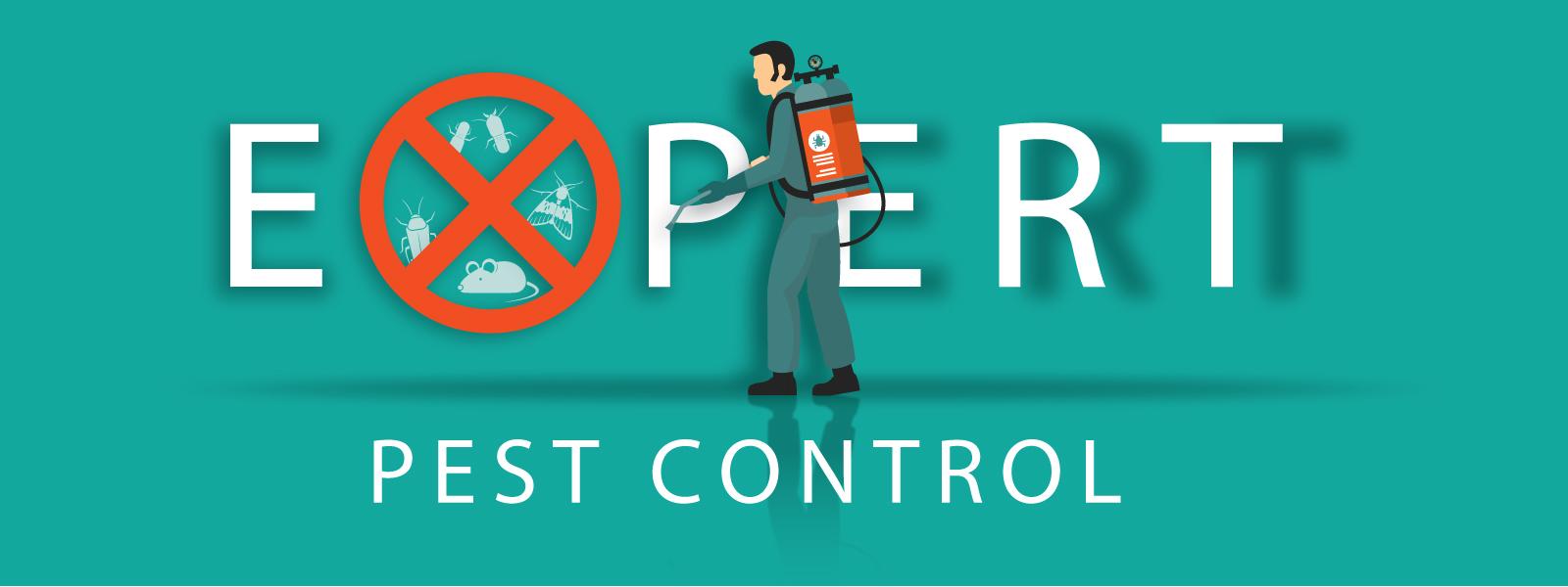 slider-expertpestcontrol-4